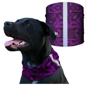 SA COMPANY Other - Purple Paisley Dog Shield Bandana Scarf